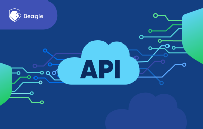API Security Testing: Importance, Risks and Best Practices