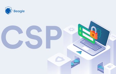 Content Security Policy (CSP): Use Cases and Examples
