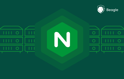 Nginx Server Security: Nginx Hardening Guide