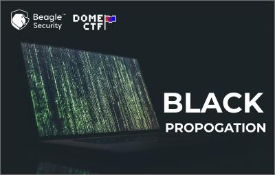 Black Propagation Writeup
