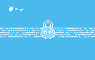Importance of TLS 1.3: SSL and TLS Vulnerabilities